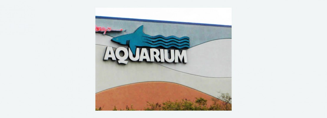 ripley's aquarium myrtle beach coupons